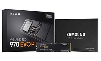 250 GB NVME SSD